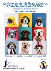 Certamen de Belleza Canina @ Plaza de los Arcos