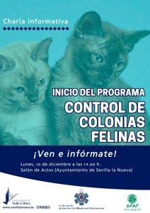 """Charla Informativa: inicio del programa """"control de colonias felinas"""" @ Salón de Actos Ayuntamiento de Sevilla la Nueva"""