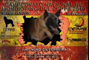 Campeonato Nacional de Mondioring @ Polideportivo 'Héctor Valero'
