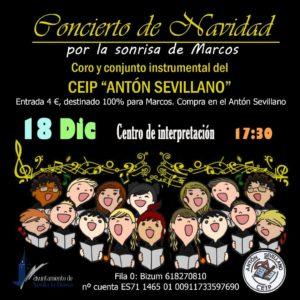 """Concierto de Navidad """"Por la sonrisa de Marcos"""" @ Centro de Interpretación"""